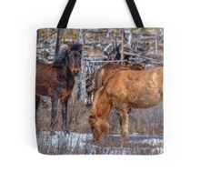 Furry Colts Tote Bag