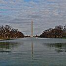 Washington Monument by Michael Powell
