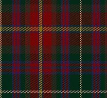 00343 Meath County District Tartan Fabric Print Iphone Case by Detnecs2013