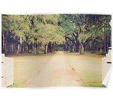 mossy oaks Poster
