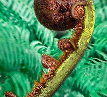 Jade coloured Fern. by JeanNieman