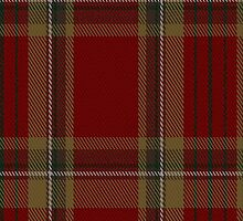 00358 Tyrone County District Tartan Fabric Print Iphone Case by Detnecs2013