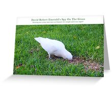 Cocky - Spy On The Grass Four Greeting Card