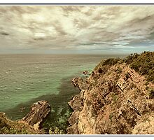 Bennets Head lookout Forster by john NORRIS