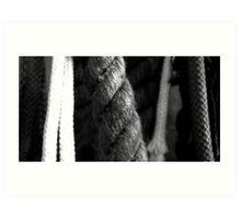 ropes Art Print