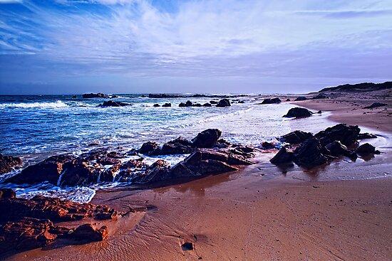 Blue Sea & Rocks by Warren. A. Williams