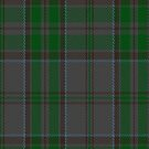 00366 Wicklow County District Tartan Fabric Print Iphone Case by Detnecs2013