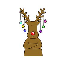 Reindeer with Baubles. Photographic Print