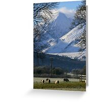 Killarney, Kerry, Ireland Greeting Card