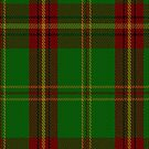 00384 Beard Family Tartan Fabric Print Iphone Case by Detnecs2013