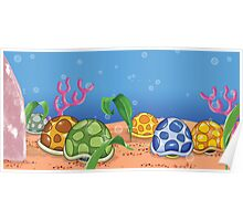 Turtle Shells Poster