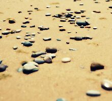 Pebbles on the Beach by Michelle Calkins