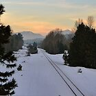 Snowy Track by Christi Warn