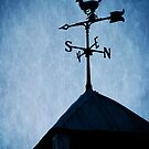 Skyfall Deer Weathervane  by Edward Fielding