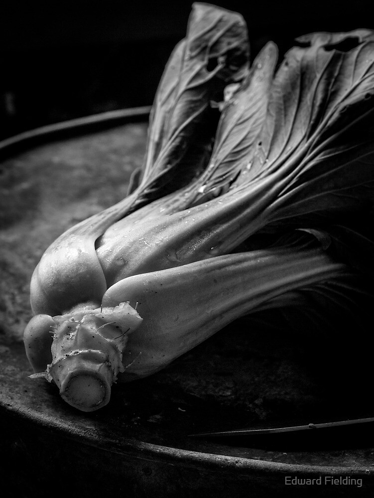 Leeks Still Life Black and White by Edward Fielding