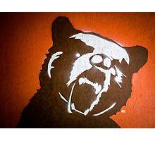 Grizzly Bear Graffiti Photographic Print