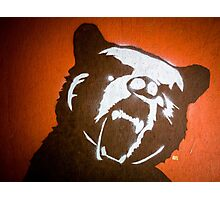 Grizzly Bear Graffiti Photographic Print