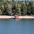 fishing house  by mrivserg