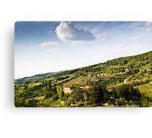 Chianti Region, Tuscany Canvas Print