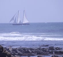 Tall Ship Sailing Around Point Loma by seeingred13