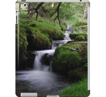 Welsh stream iPad Case/Skin