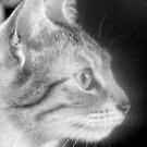 My little girl Willow by weecritter