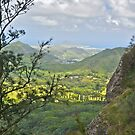 Kane'ohe Bay from Pali Lookout by David Davies