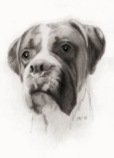 """Bailey"" by Martin Kirkwood"
