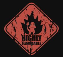 Highly Flammable Kids Clothes