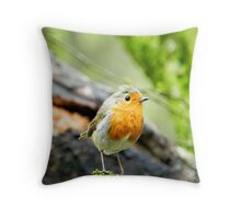 Little Robin showing you his good side! Throw Pillow