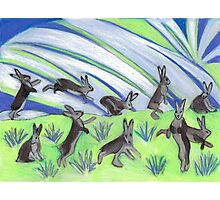 Ten Leaping Hares Photographic Print