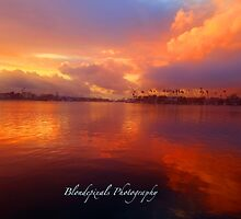 Skies on Fire  by Blondepixals