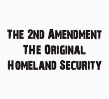 2nd Amendment - Original Homeland Security by sturgils
