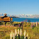 At Tekapo lake by andreisky