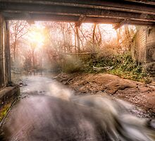 Beauty Under The Old Bridge by Brent Craft