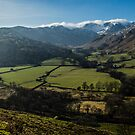Deepdale & Brotherswater Panoramic by David Lewins