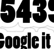 241543903 Google it Sticker