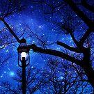 Magical Night by Jane Neill-Hancock