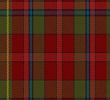 00420 Golden Broom #2 Tartan Fabric Print Iphone Case by Detnecs2013