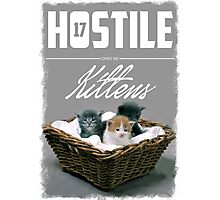Hostile 17 Owes Me Kittens (Clean) Photographic Print