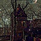 Enchanted Castle in the Moonlight by Jane Neill-Hancock