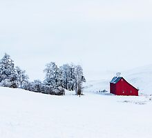Winter in The Palouse  by Jim Stiles
