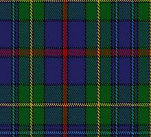 00436 The House of Bailey Tartan Fabric Print Iphone Case by Detnecs2013