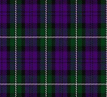 00437 Baillie High Society Tartan Fabric Print Iphone Case by Detnecs2013