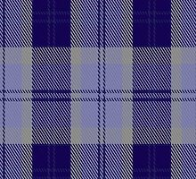 00444 Bannockbane Blue #2 Tartan Fabric Print Iphone Case by Detnecs2013