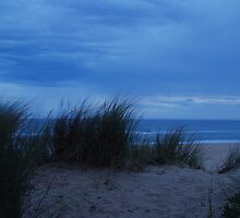 Beach Dune by unstoppable