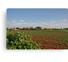 The Plowed fIeld Canvas Print