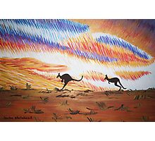 Kangaroos of Colour Photographic Print