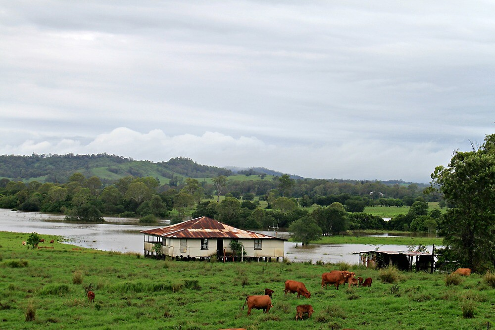 Flood Waters behind Abandoned Farmhouse by Jenelle  Irvine