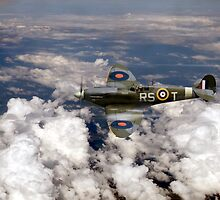 Bob Stanford Tuck's Spitfire Vb by Gary Eason + Flight Artworks